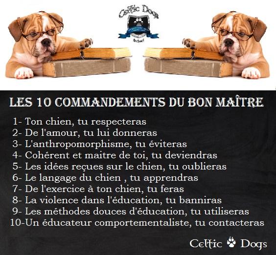 les 10 commandements du maître
