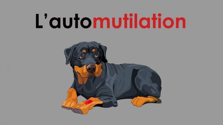Automutilation