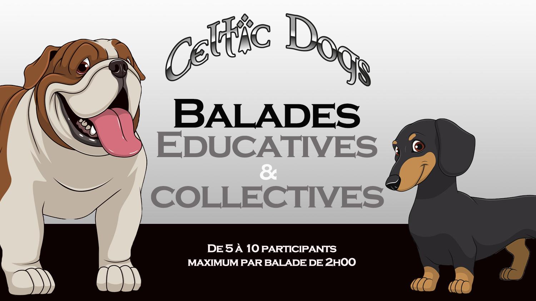 Balades educatives et collectives 1