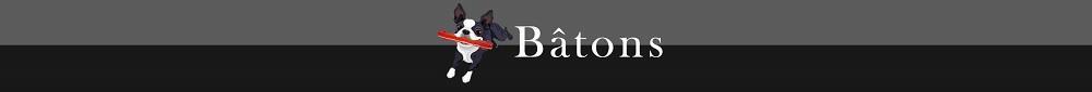 Batons1