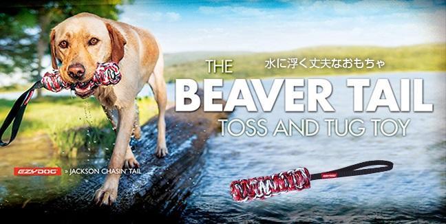 Beaver tail650