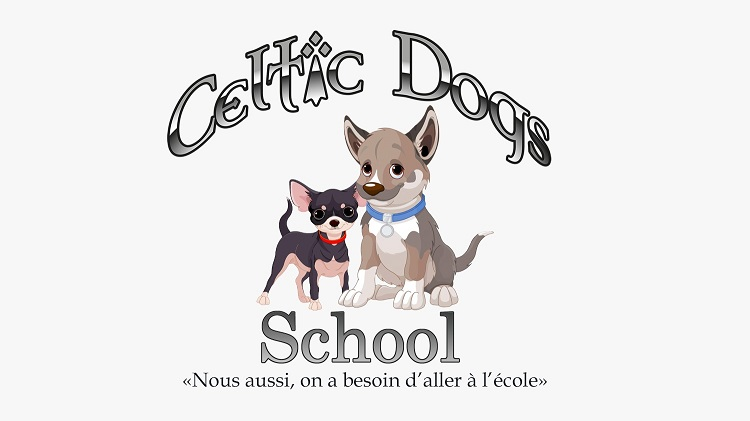 Celtic dogs school education