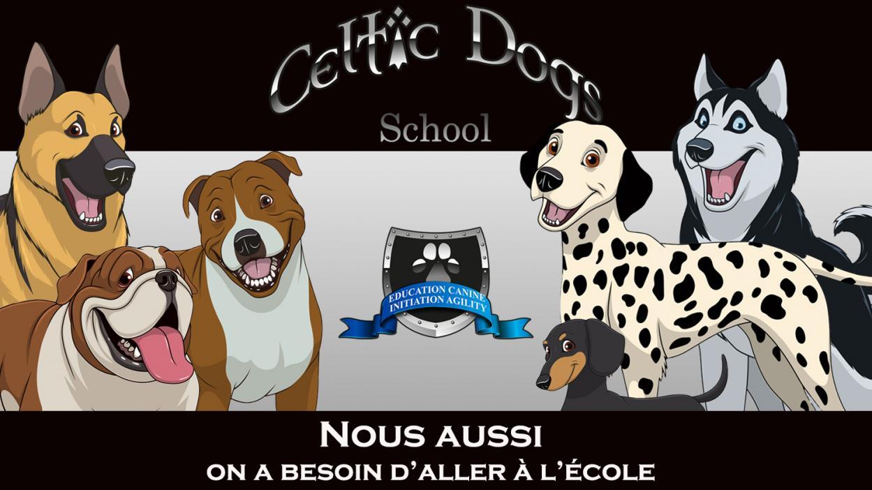 Celtic dogs school