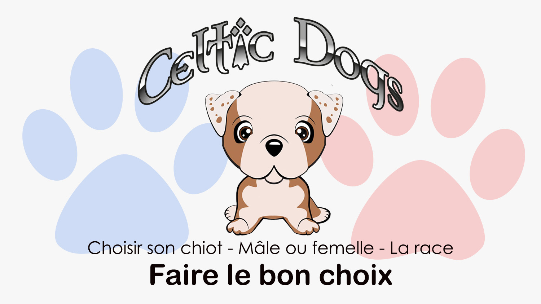 Choisir son chiot ou son chien
