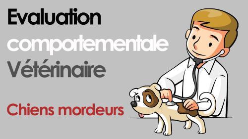 Evaluation comportementale veterinaire