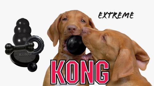 Extreme kong