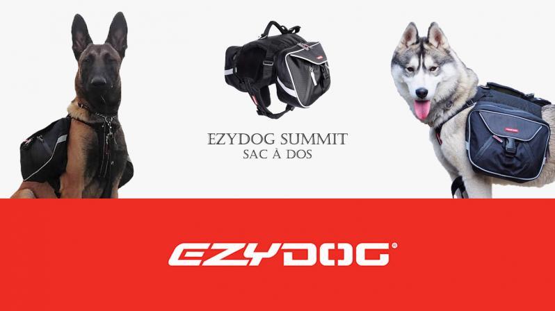 Ezy dog summit