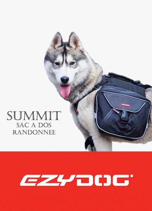 Ezydog summit 1