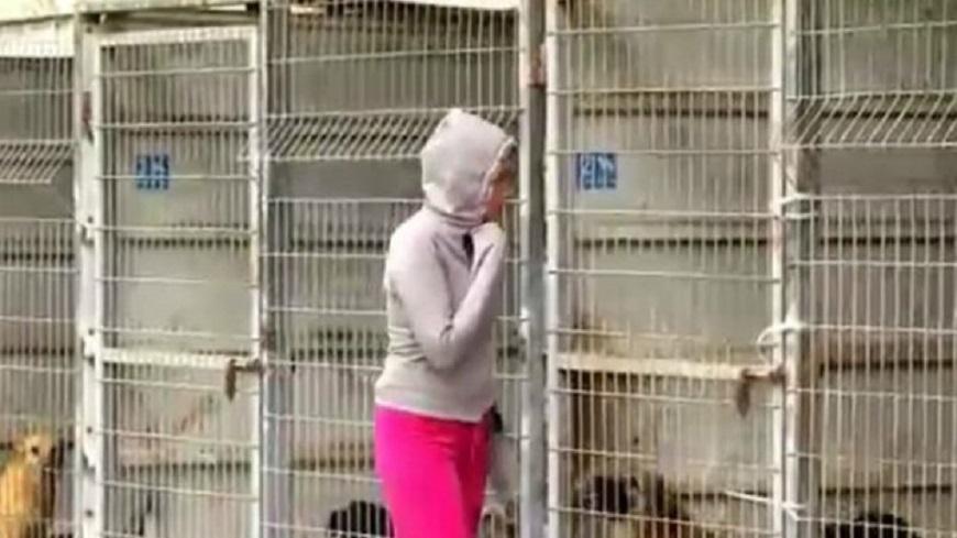 Femme dans un refuge b fb 5cdbb882319c6