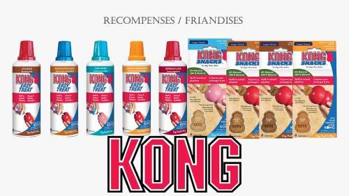 Friandises kong 1