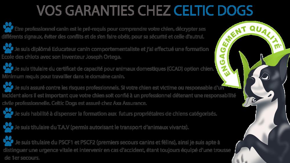 Garanties celtic dogs 2