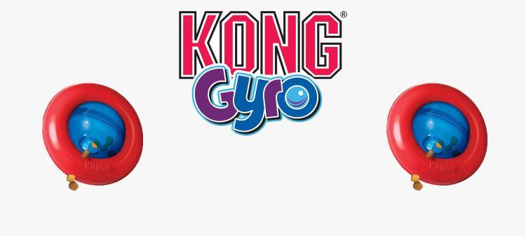 Gyo kong