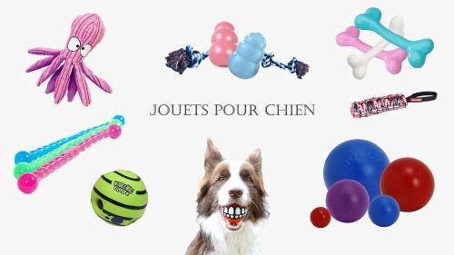 Jouets pour chiens