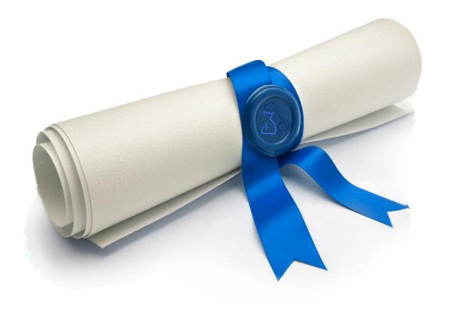 Kisspng diploma academic certificate academic degree profe diplome 5b3e153cd6bf29 3339540515307953248796