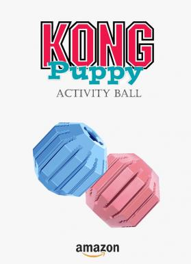 Kong activity ball