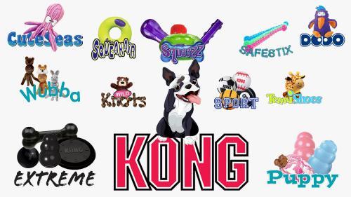 Kong all