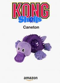 Kong caneton