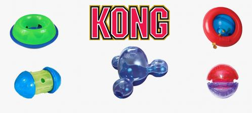 Kong distributeurs