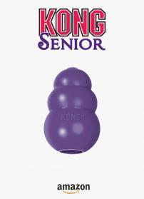 Kong senior 1