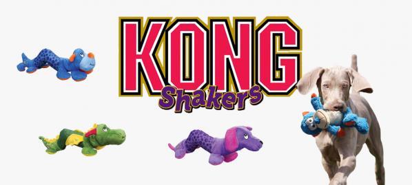 Kong shakers1
