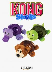 Kong shells1