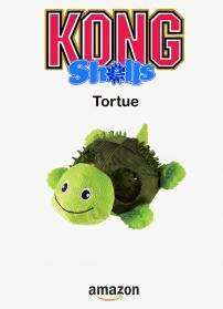 Kong tortue