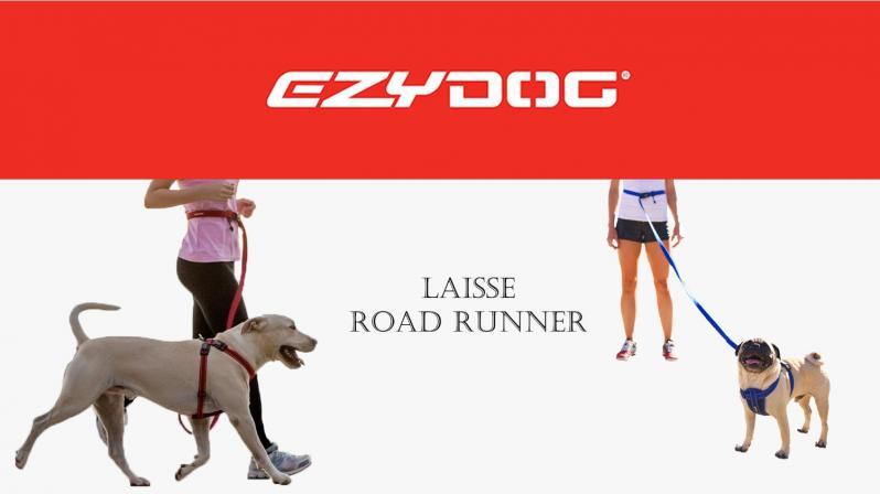 Laisse road runner 1
