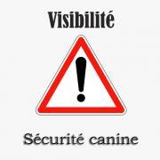 Logo securite