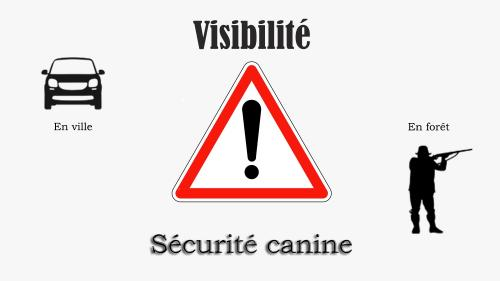 Logo securite