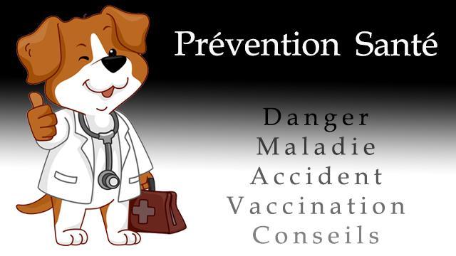 Prevention sante 1