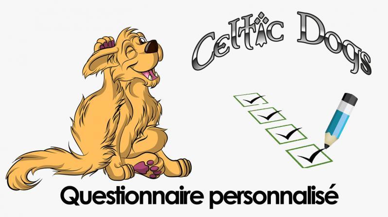 Questionnaire personnalise