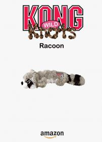Racoon kong