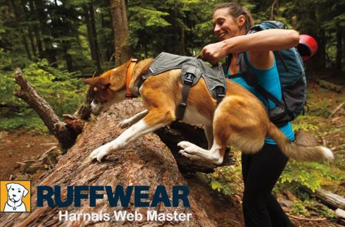 Ruffwear web master harness