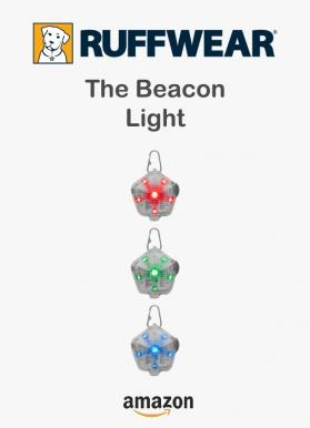 The beacon light 1