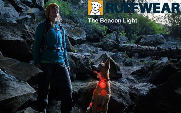 The beacon light
