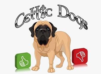Votre avis celtic dogs 1