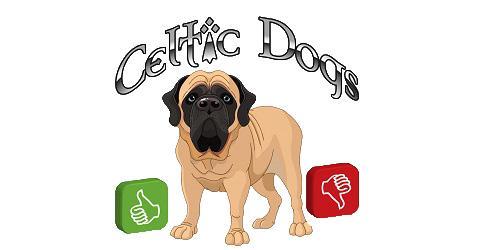 Votre avis celtic dogs1